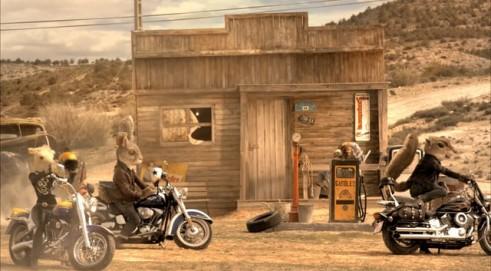 Bucker motos